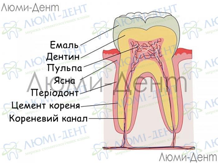 Зміцнення відновлення зубів зубної емалі Люмі-Дент