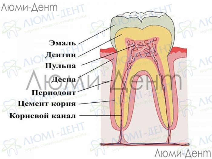 Укрепление зубной эмали фото ЛюмиДент