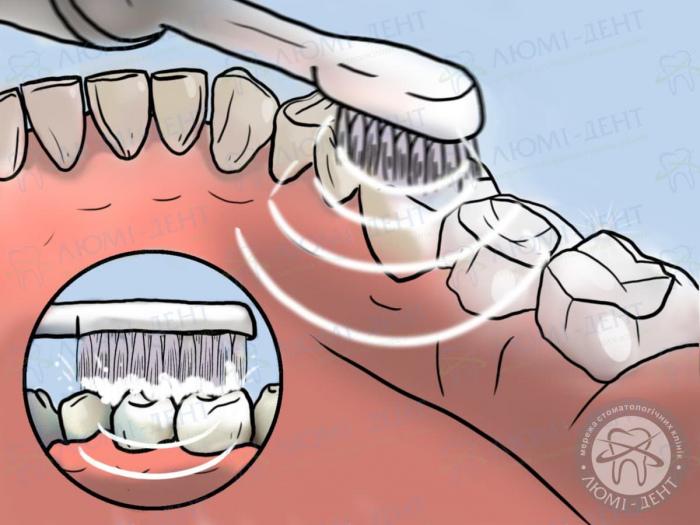 ультразвуковая зубная щетка обзор фото ЛюмиДент
