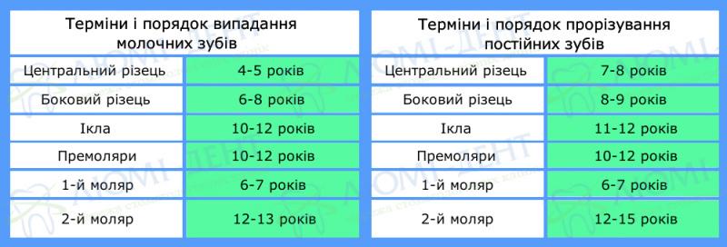 Порядок зміни молочних зубів фото Київ Люмі-Дент