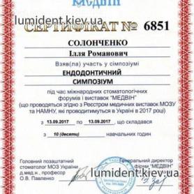 Сертификат Солонченко Илья Романович