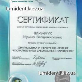 сертификат, киев Шаповалова Ирина