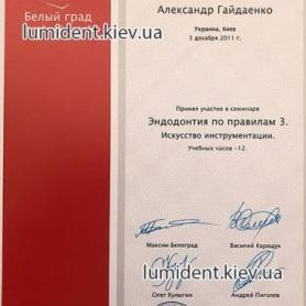 сертификат Гайдаенко Александр