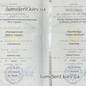 Диплом кандидата наук, Днестранский Вадим Игоревич