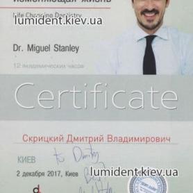 Скрицкий Дмитрий Владимирович сертификат