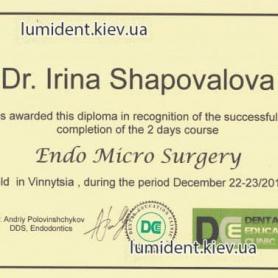 Шаповалова Ирина сертификат