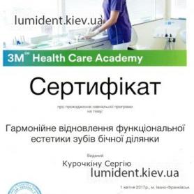 Сертификат Курочкин Сергей Игоревич