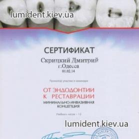 Скрицкий Дмитрий сертификат