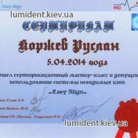 сертификат, доктор Коржев Руслан