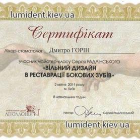 Горин Д.В сертификат