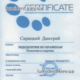 сертификат, Скрицкий Дмитрий